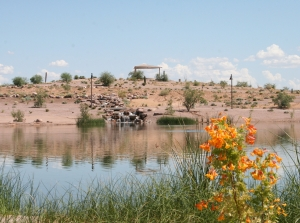 Chandler's Veterans Oasis Park is part of a system of lakes and basins that returns  2 million gallons of water a day back into the ground.