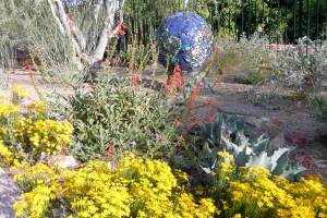 Glendale is one of many Valley cities that has a desert-adapted demonstration  garden.