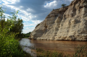 Along Arizona's Verde River Photo: Cheryl Zook/National Geographic