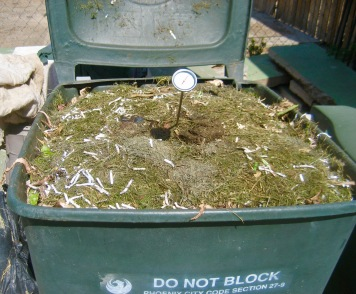 Compost should reach about 140 degrees.